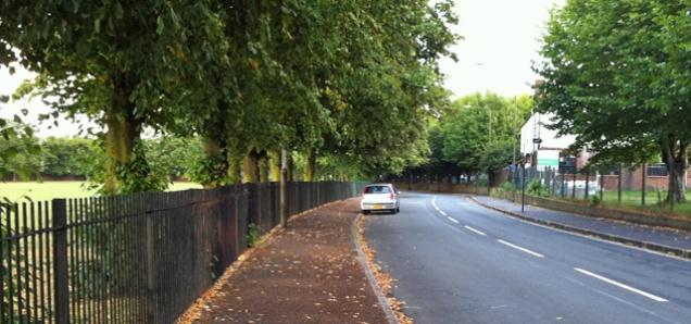 Charlton Park Lane, 2011