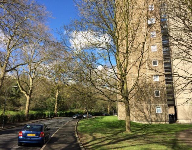 Morris Walk Estate