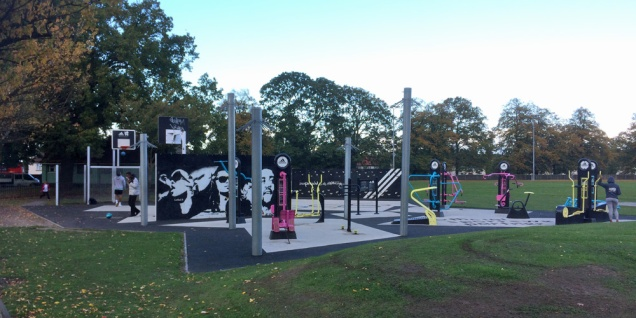 Olympic funding brought this mini-gym to Charlton Park. Could a ward budget back more sports or play equipment to our parks?