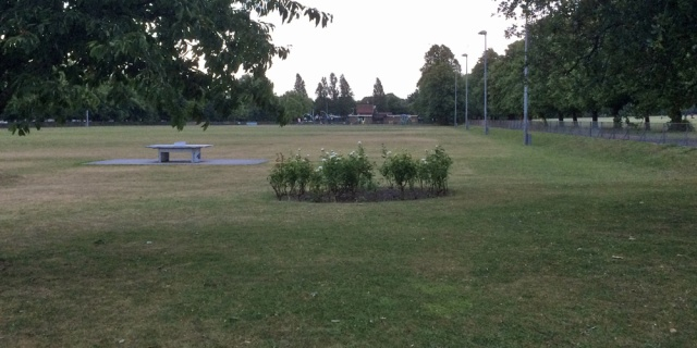 The skate park would be next to the Charlton Park's outdoor gym
