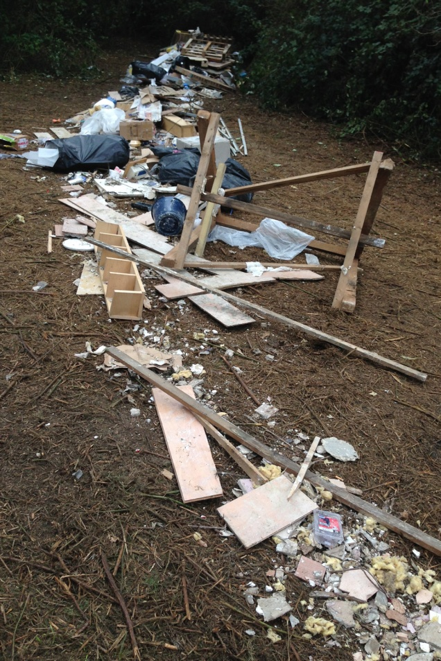 Maryon Wilson Park flytipping