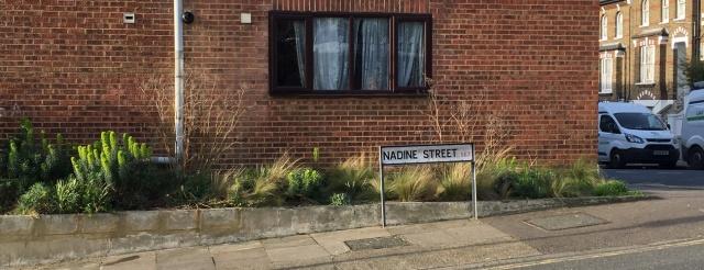 Nadine Street