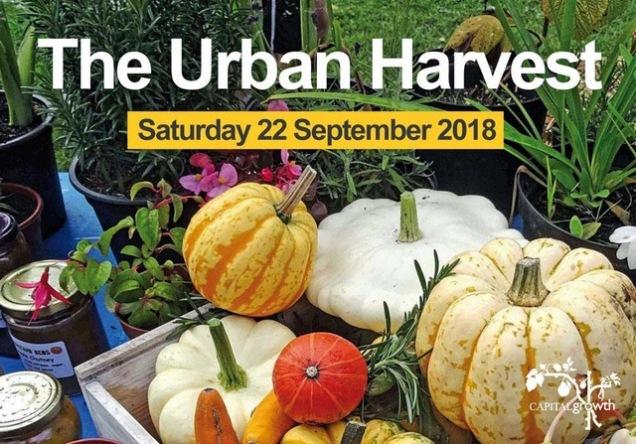Urban Harvest flyer